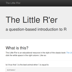 Screenshot of The Little R'r Website